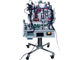Model of Ambassador MPFI Engine